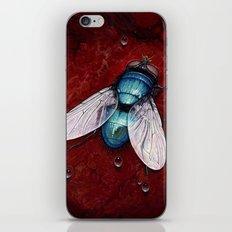 Green Bottle fly iPhone & iPod Skin