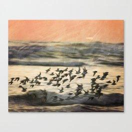 Flock over ocean Canvas Print