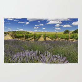 Countryside Vinyard Rug