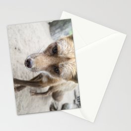 Milkweed - Cinnamon Fox Stationery Cards