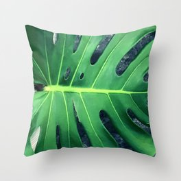 Stunning Palm Leaf In Mindfulness Repose Throw Pillow