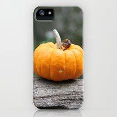 Lonely Pumpkin Slim Case iPhone (5, 5s)