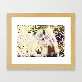 Colored Pony Framed Art Print