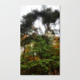 Brightly Canvas Print