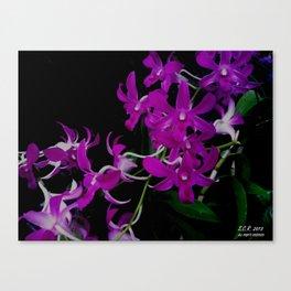 Purple Orchid Flower By Saribelle Rodriguez Canvas Print