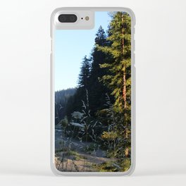 Eel River 2 Clear iPhone Case