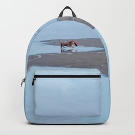 Doggy Heaven Backpack
