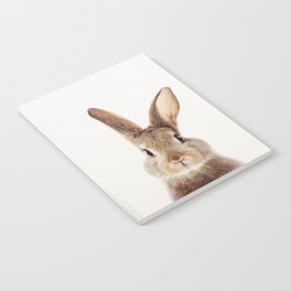 Baby Rabbit, Baby Animals Art Print By Synplus Notebook