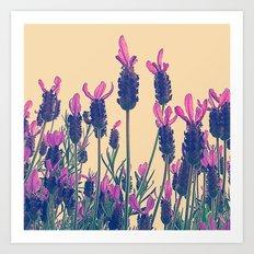 FLOWER 028 Art Print