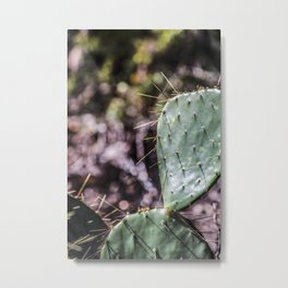 Nature: As Cuddly as a Cactus Metal Print