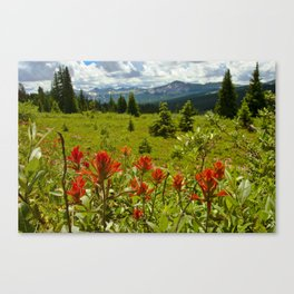 Red paintbrush with mountain view Canvas Print
