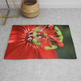 Passiflora vitifolia Scarlet Red Passion Flower Rug