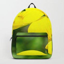 Soft Birdsfoot Trefoil Backpack