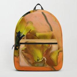 Joyful Springtime Backpack