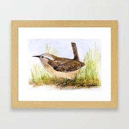 Wren Woodland Bird Nature Art Framed Art Print