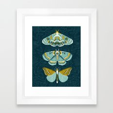 Lepidoptery No. 8 by Andrea Lauren  Framed Art Print