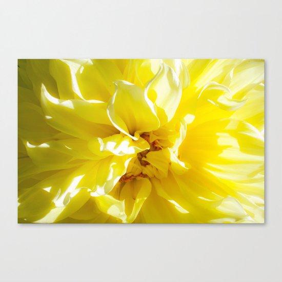 yellowSea Canvas Print