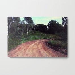 A Curve In The Road Metal Print
