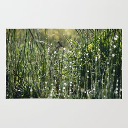 Dew on the Grass Rug