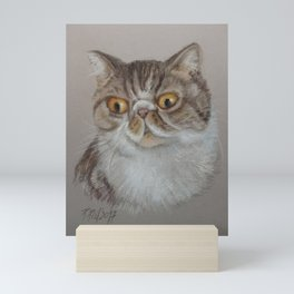Exotic Cat Portrait Tabby Cat Pastel drawing Sketch on grey background Decor for Cat Lover Mini Art Print