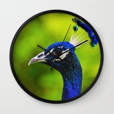 Pretty as a Peacock I Wall Clock