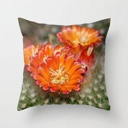 Cactus Blossom Bloom Throw Pillow
