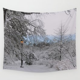 Prospect Park - Winter 2016 Wall Tapestry