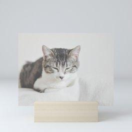 Cat by Chinda Sam Mini Art Print