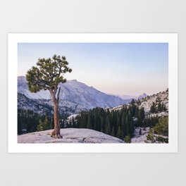 Half Dome - Olmsted Point Art Print