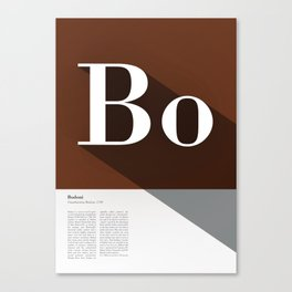 The Typographic Alphabet: Bodoni (2/26) Canvas Print