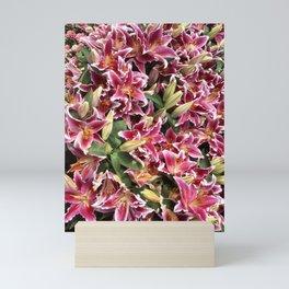 Stargazer Lillies Mini Art Print