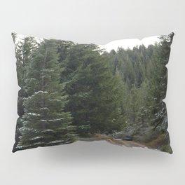 First winter snow.. Pillow Sham