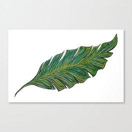 Australica Banana Leaf Canvas Print