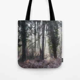 Illuminated Winter Beech Tote Bag