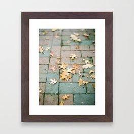 Fall in Boston Framed Art Print