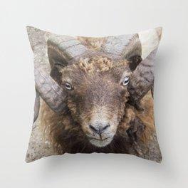 the sheep's horns Throw Pillow