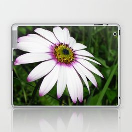 A Touch of Pink Laptop & iPad Skin