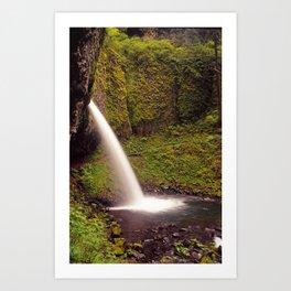 Ponytail Falls V Art Print
