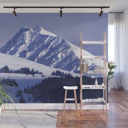 Back-Country Skiing - 8 Wall Mural