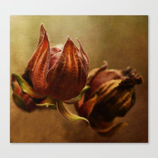 Autumn glow Canvas Print