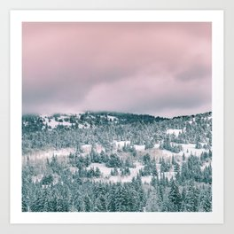 Blush Sky in Woodland Heights Art Print