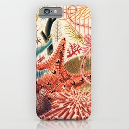 Great Barrier Reef Vintage Starfish Illustration by William Saville-Kent, 1893 iPhone Case