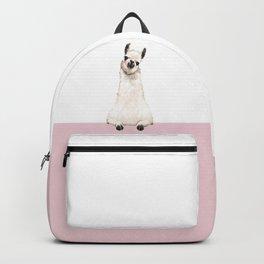 hi! Llama Backpack