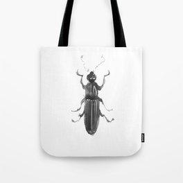 Dhysores quadriimpressus Tote Bag