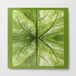 MODERN TROPICAL LEATHERY GREEN LEAF DESIGN Metal Print