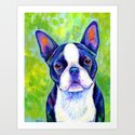 Effervescent - Colorful Boston Terrier Dog by psychedeliczen