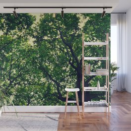 In the woods the light through leaves Wall Mural