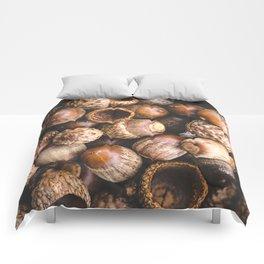 Squirrel Harvest Comforters