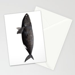Northern right whale (Eubalaena glacialis) Stationery Cards