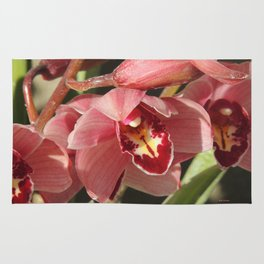 One Orchid on a Line Rug